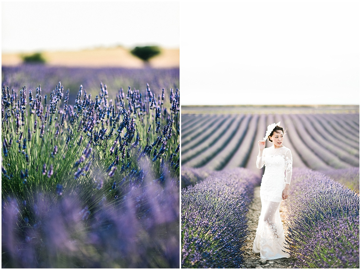 French Chinese Lavender Provence Pre Wedding destination Photographer